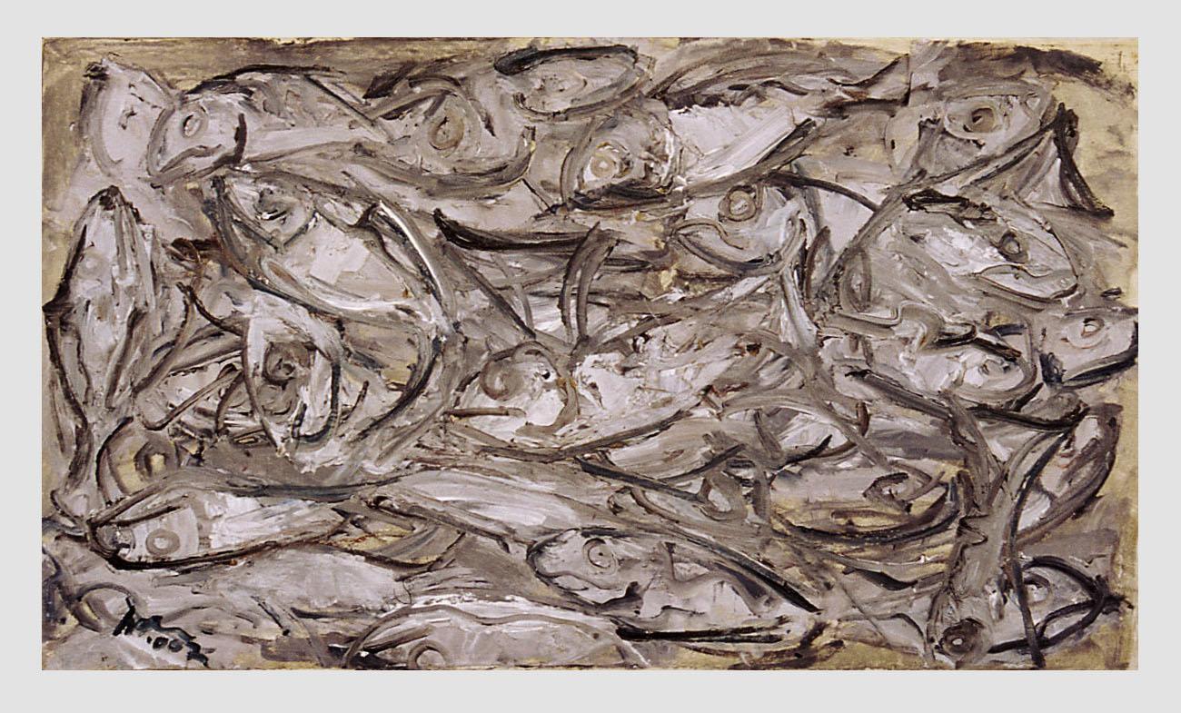 ivan jovanovic-newfoundland round harbour-mackerel